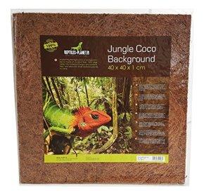 REPTILES PLANET Décor de Fond pour Reptiles/Amphibiens Jungle Coco Background 40 x 40 x 1 cm