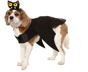 Forum Novelties Bat Pet Costume Medium