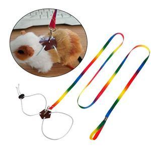 Ogquaton Laisse de qualité supérieure petits animaux domestiques, corde de plomb réglable en plein air pour la poitrine colorée, longueur 1,3 m pour harnais Hamster Lapin Chinchilla écureuil Animal