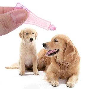 Traitement anti-puces et anti-acariens pour chien et chat
