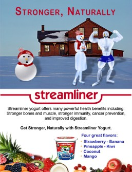 Streamliner Yogurt Advertisement | graphic design westchester ny