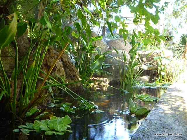 Le forum de Passion Bassin  bassin de jardin baignade naturelle technique plantes aquatiques