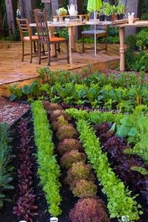 Great Gardening Ideas FaveThing Com