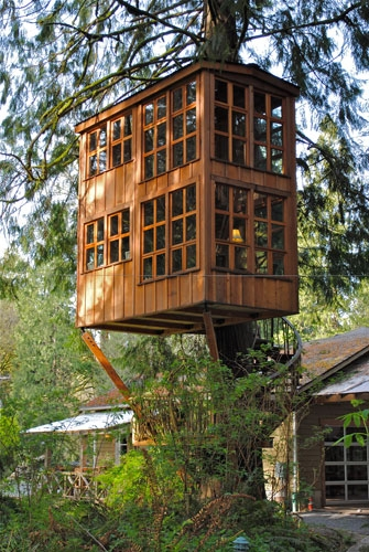 Amazing treehouse  FaveThingcom