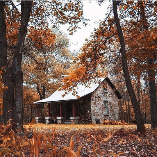 Stone Cabin in the Woods  FaveThingcom