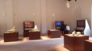Battaglia delle Egadi museo