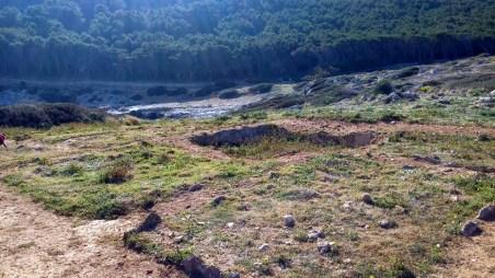 Salagione Cala Minnola