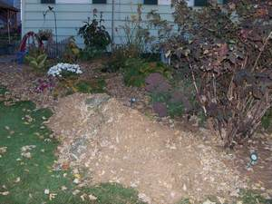 pine-needle-mulch-3-300