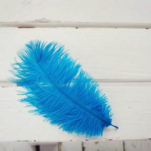 Turquoise Parrot Ostrich Feather Plume