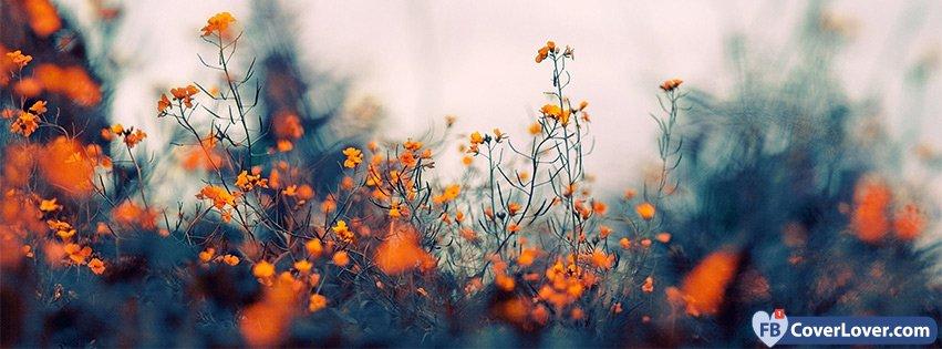Cute Alien Wallpaper Christmas Orange Flowers Nature And Landscape Facebook Covers Photo