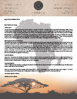 Montana Morrow Prayer Letter:  Tanzania Update