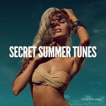 Secret Summer Tunes, Vol. 1