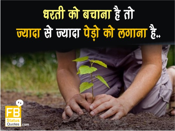 Save Trees Quotes