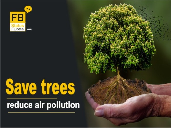 Save trees reduce air pollution
