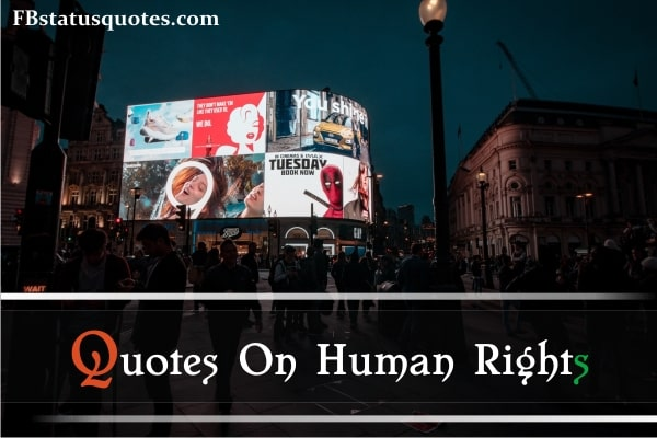 Quotes On Human Rights