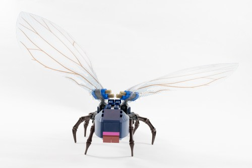 76039 The Ant Front