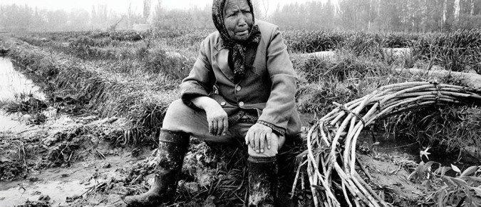 An elderly woman rests on a muddy bank in her rice field near Kucha.