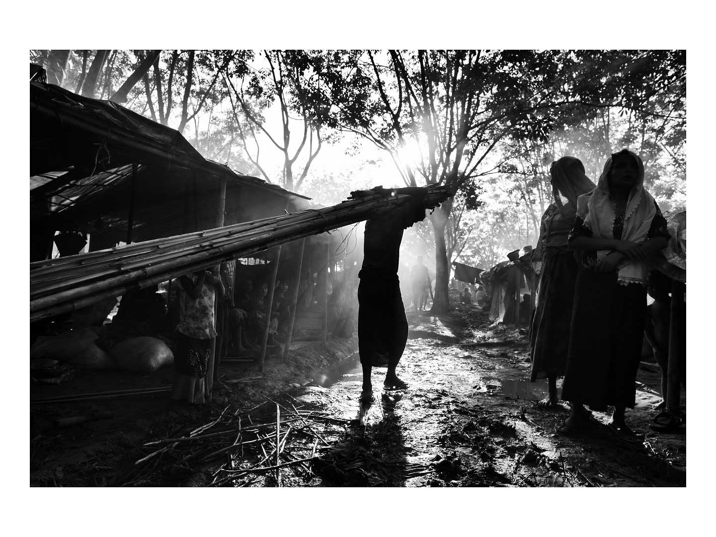 A Rohingya man carries a load of bamboo which he will use to build his family's hut. Photo by Greg Constantine.