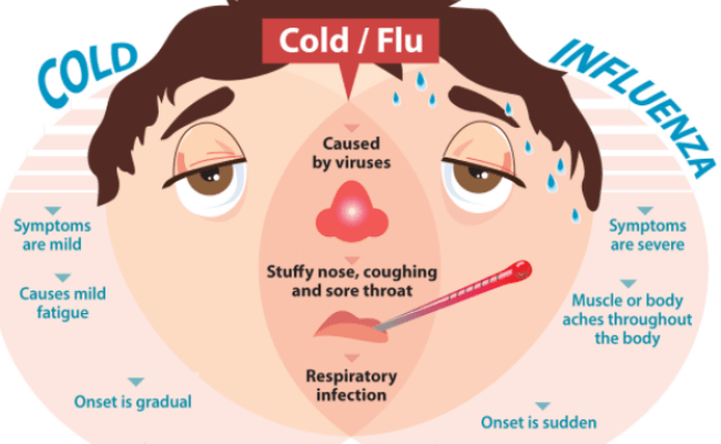 Types Of Flu Causes Symptoms Prevention Tips