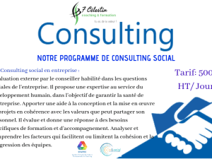 consulting social