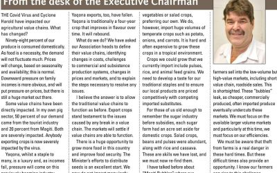 From the Desk of the Executive Chairman