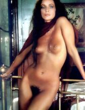 sônia-braga-nude-05
