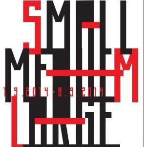razstava SML