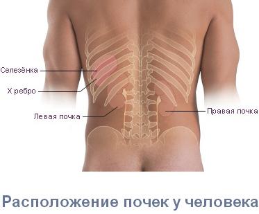 1 сурет: Сурологиялық ауыртпалықтар - «Клиника» АҚ Отбасылық дәрігер
