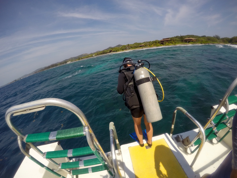 Scuba diving in roatan honduras fearless captivations - Roatan dive sites ...
