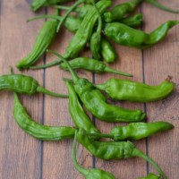 8 Ways to Fall In Love With Shishito Peppers