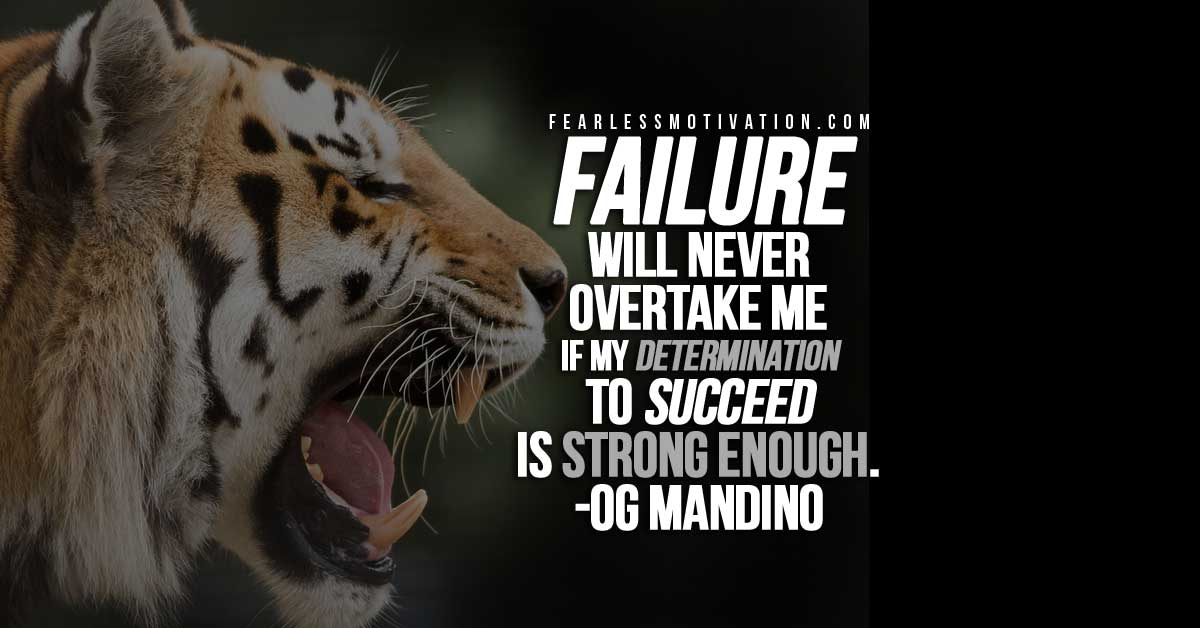 Lone Wolf Wallpaper Quote Og Mandino Quotes To Inspire You To Greatness
