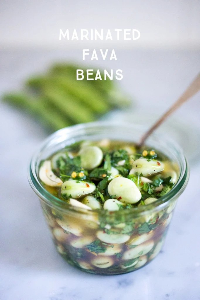 A simple, flavorful recipe for Marinated Fava Beans with olive oil, garlic, lemon zest, and fresh herbs. A great way to persevere summer shelling beans. Serve with hummus and pita!| www.feastingathome.com