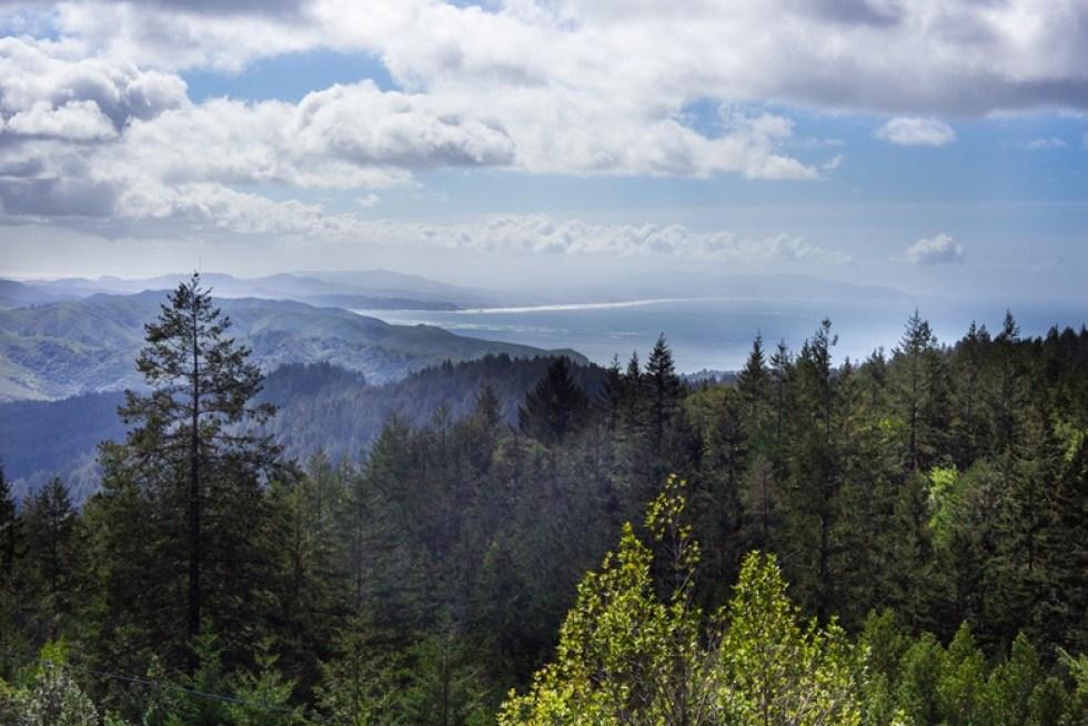 Trail to East Peak- Mt Tamalpais State Park- | feastingathome.com