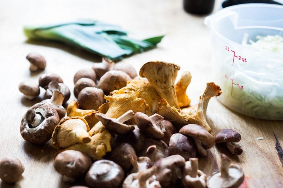 mushroom-fennel-stuffing-100