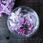 Lilac water!