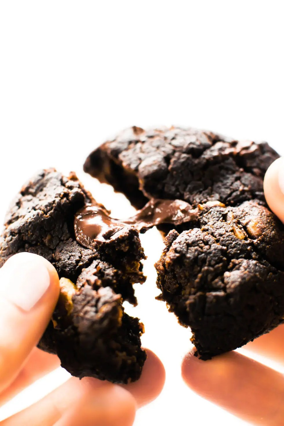 What To Do When Your Dog Eats Dark Chocolate