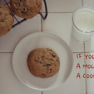 Feast of Fables: If You Give a Mouse a Cookie
