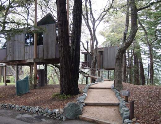 post ranch tree house