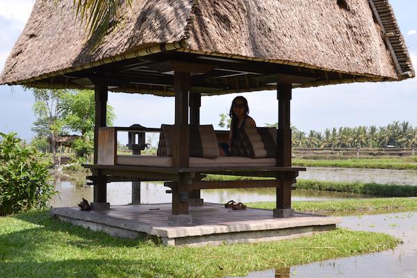 Chedi Rice Bale