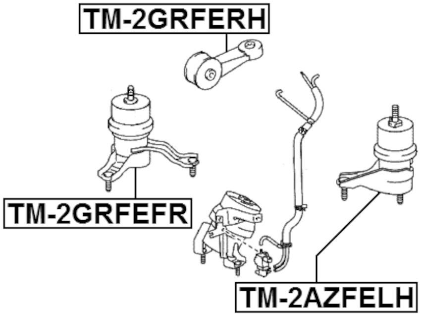 Front Engine Mount (Hydro) FEBEST TM-2GRFEFR OEM 12362-31040