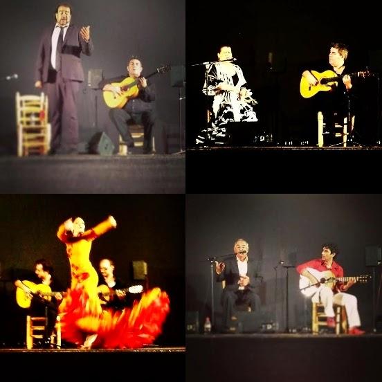 XVI Noche Flamenca de Cartaojal