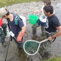 Inventaires piscicoles par pêche à l'électricité