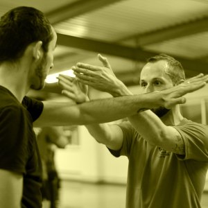 FWTS | Private Wing Chun Kung-Fu Tuition