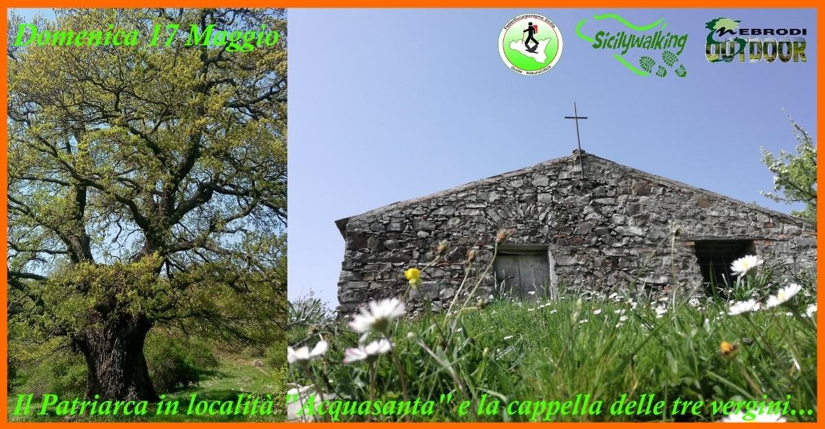 """Il lago Trearie, il Patriarca della località """"Acquasanta"""" e La Cappella delle tre Vergini…."""