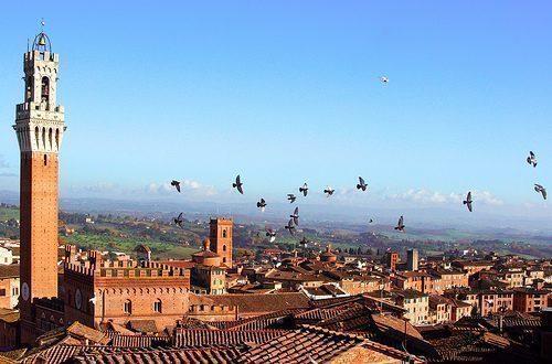 Siena la Toscana che voglio scoprire  Federica Piersimoni