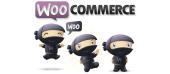 Wordpress  para Woocommerce