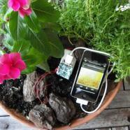 Smartphone: si ricaricano gratis… grazie ai batteri!