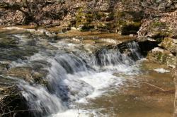 Morgans\' Falls