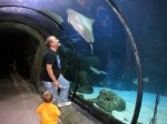 Dave and Spencer looking at rays