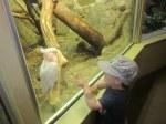 Spencer checks out a bird